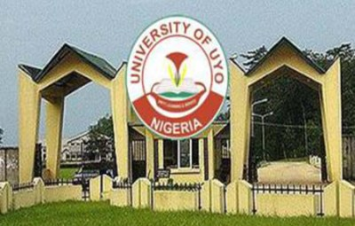 Image result for University Of Uyo