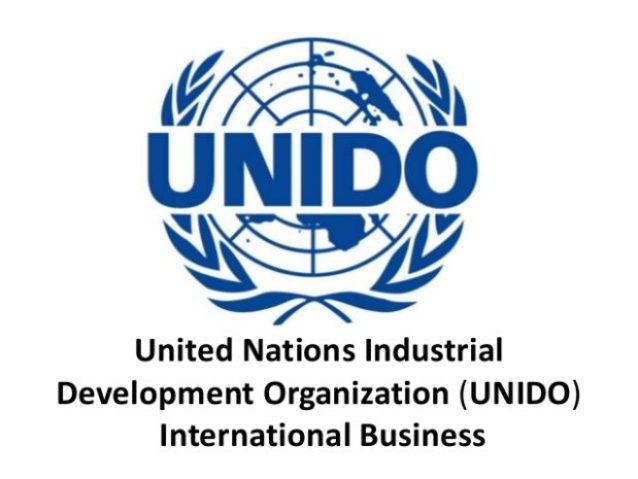 United Nations Industrial Development Organisation Unido Made Nigeria
