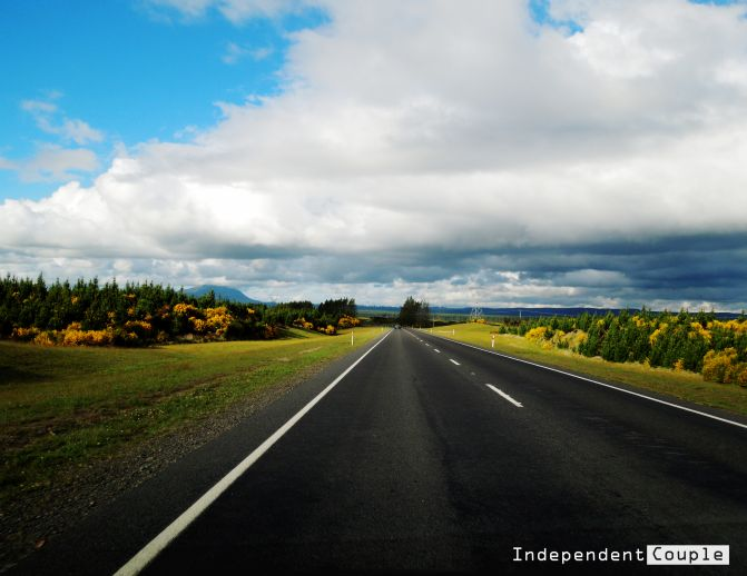 Important Things To Avoid To Travel And Work Happily In New Zealand