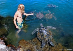 Swimming with turtles Samoa