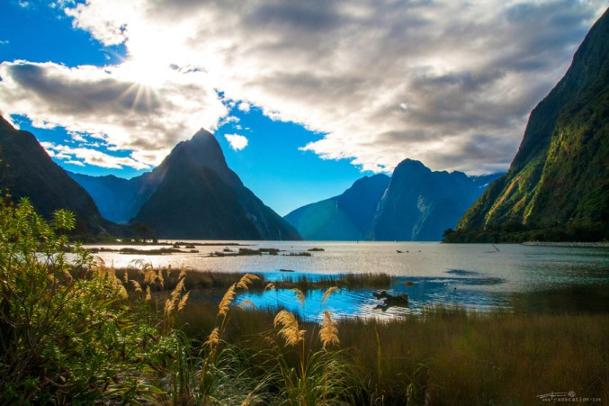 Mitre Peak, Milford Sound, New Zealand, travel, holiday, nature,