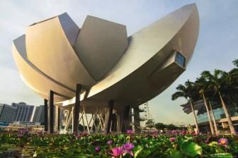 ArtScience Museum, Top 8 Things To Visit in Singapore, Singapore travel guide, Singapore guide, Singapore art, What to do in Singapore, What to see in Singapore, Best of Singapore, travel couple guide,