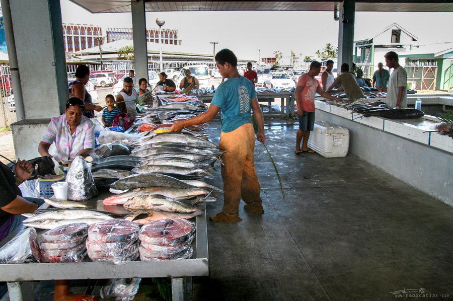 Fish market Apia, Apia fish market, Samoa travel guide, samoa travel, Samoa food guide, what to eat in Samoa,