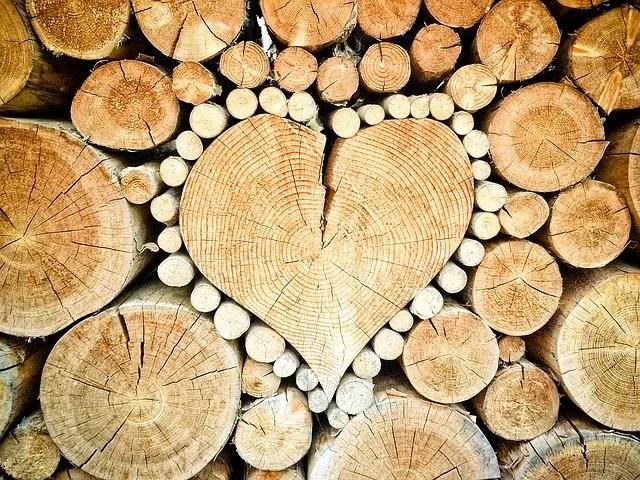 heart-1288420_640