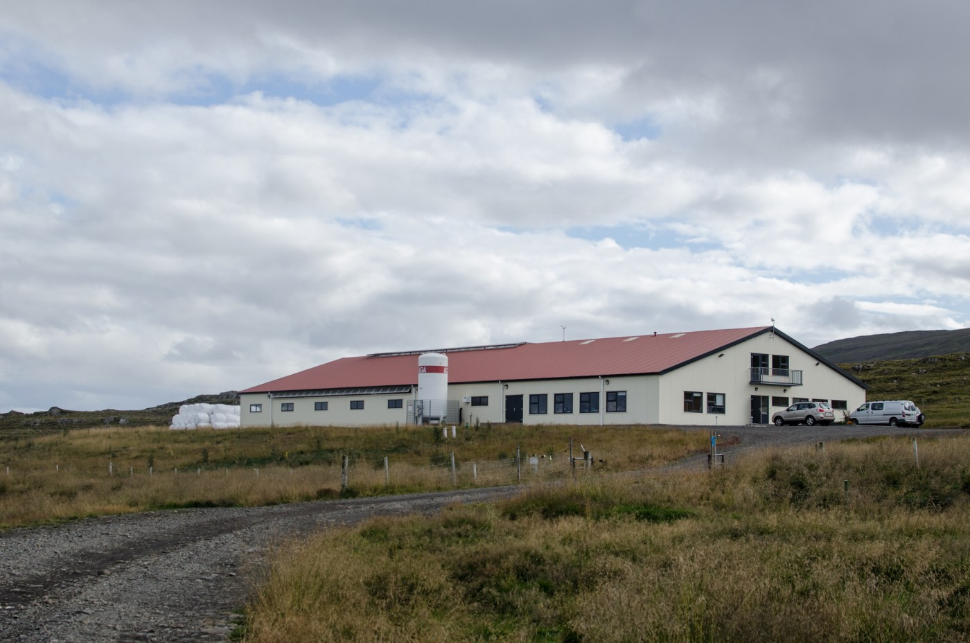 Visiting Icelandic Bull Station by Independent People