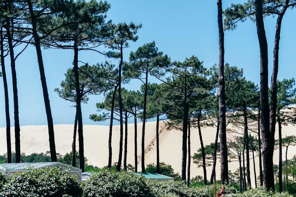 aquitaine arcachon pilat pyla sand hill forest