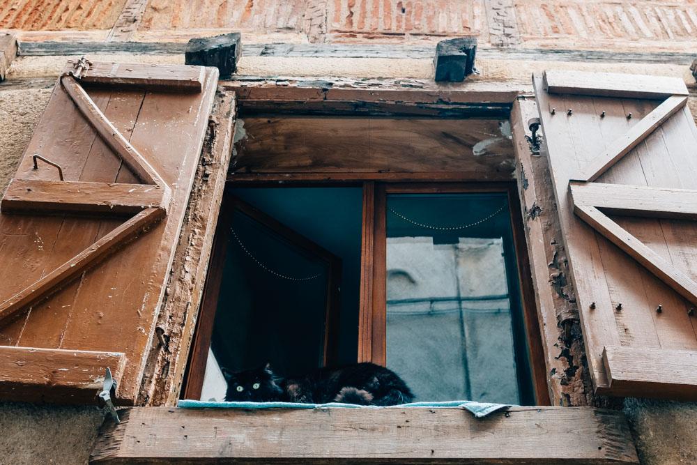 occitanie lot cahors cat window street