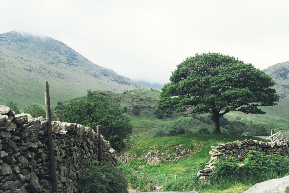 Rencontres Cumbria Royaume-Uni