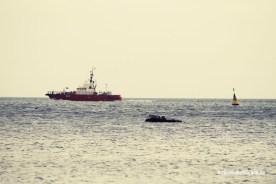 Boot und Robbe
