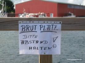 Brutplatz