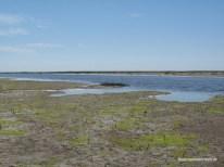 Lagune Boehl