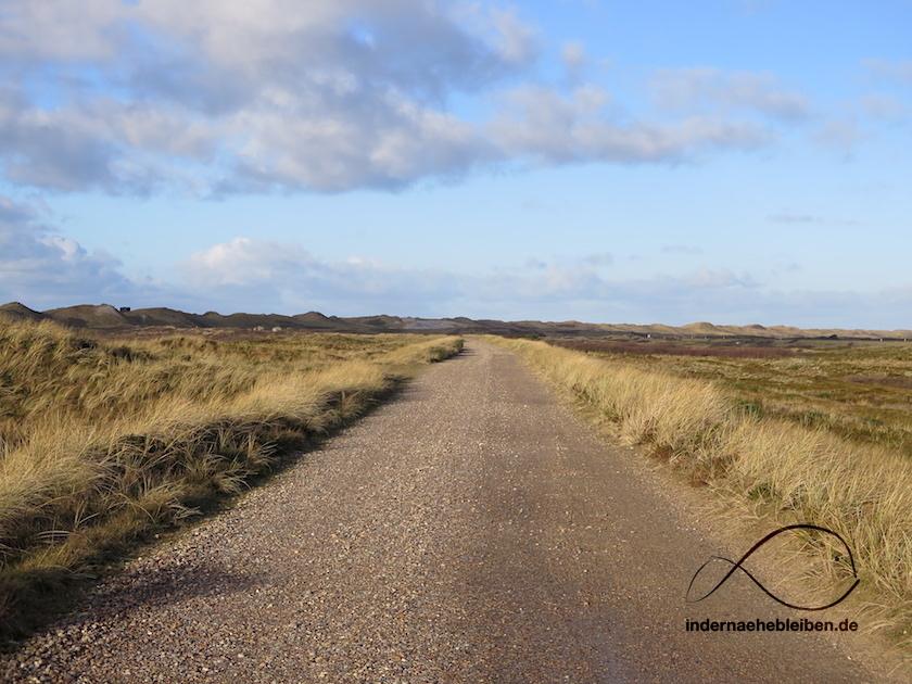 Radweg Nymindegab