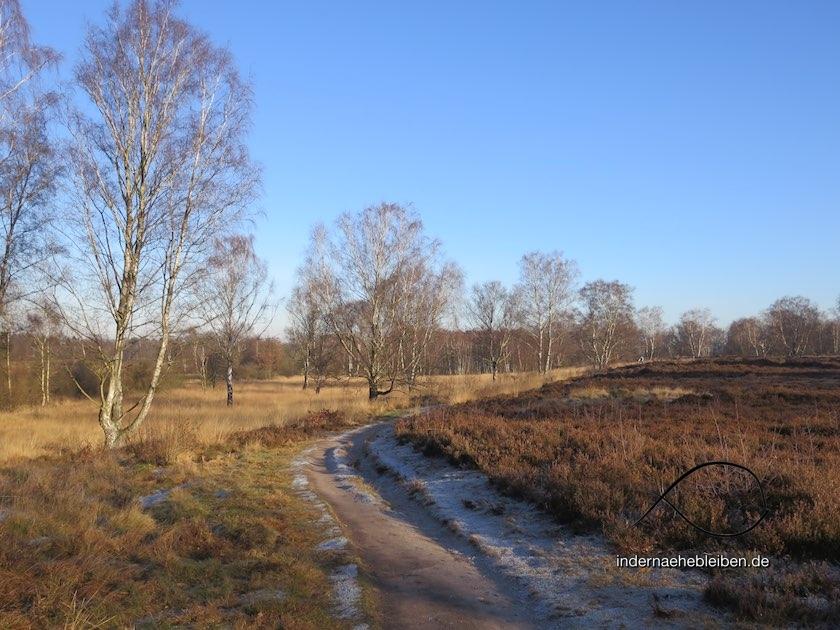 Wittmoor Winter