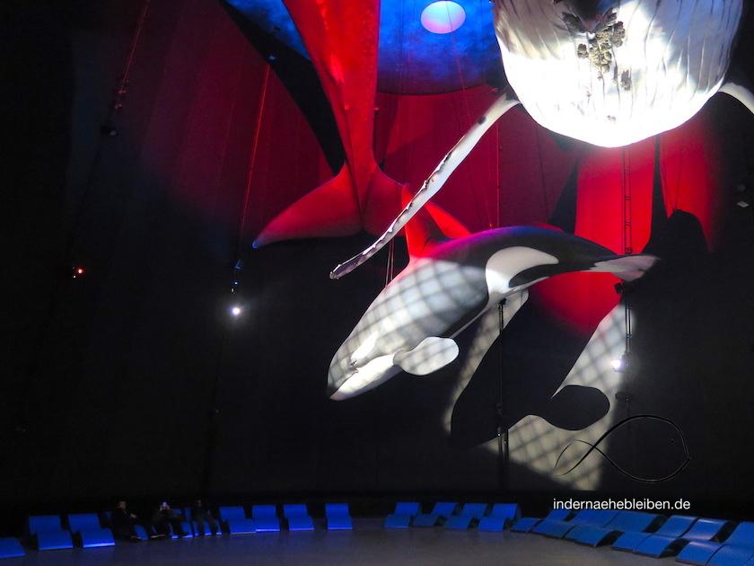 Multimedia Ozeaneum