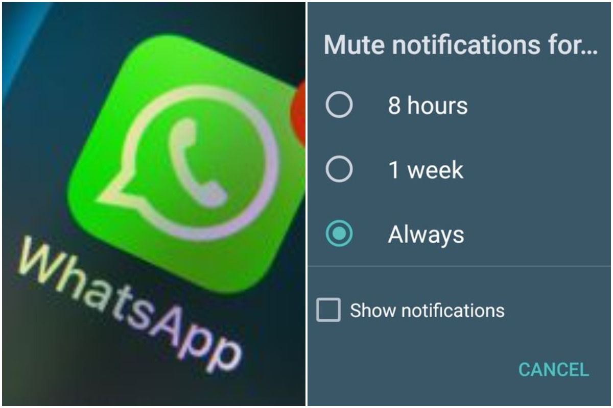 Finally! WhatsApp Now Allows Users to Mute a Chat Forever, Elated Netizens Say 'Thank You Zuck Mama'