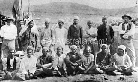Indian Immigrant labourers in Australia and the wretched Indian Pigs of Fiji