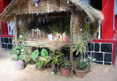 Nativity Crib Ideas