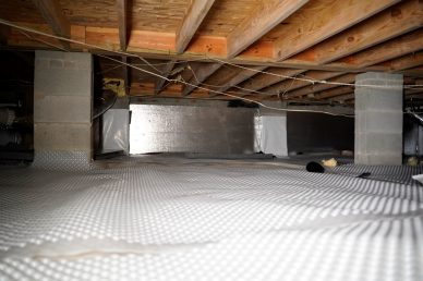 crawl space with wall and floor insulation