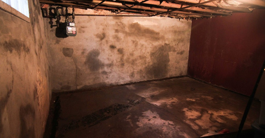 wet basement and mold problems