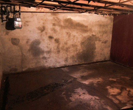 Basement Waterproofing and Mold: Conquering Both