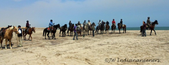 We all made it........including the oldest person to cross the Namib at 81 years young! Inspirational.