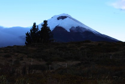 Cotopaxi (5897m) is an active volcano.