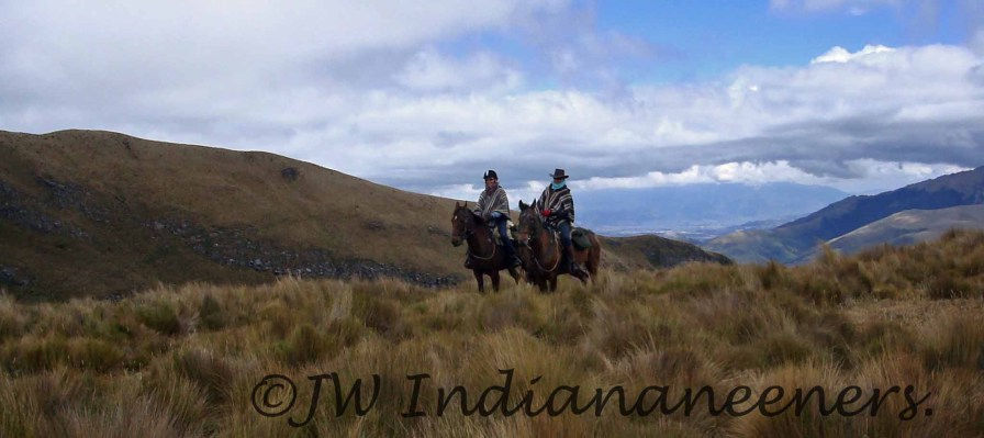 The beautiful undulating beauty of the Andes.......