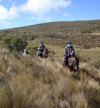Trying to find Condors in the foothills of Ruminahui.......
