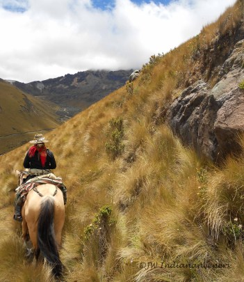Riding on the edge of mountains, trust between horse and rider is a must.