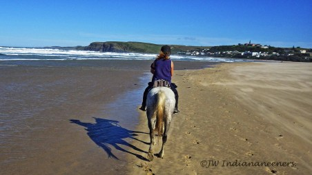 Nothing like a deserted beach and some happy fit horses to start the day!