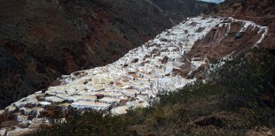 The salt pans, a relic from the Incas still being used by the locals today to extract salt from the mountain spring water
