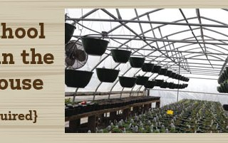 Homeschool Greenhouse Classes
