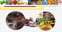 Agricultural Marketing_indianbureaucracy