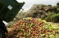 Wastage of Agricultural Produce_indianbureaucracy