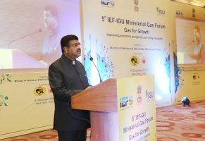 5th-ief-igu-ministerial-gas-forum-indian-bureaucracy
