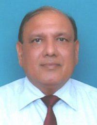 Paresh Kumar Goel IDSE-indianBureaucracy