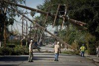 Single-family homes killed LA's urban forest-indian bureaucracy