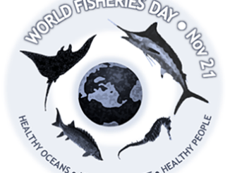 World Fisheries Day Celebrations 2017
