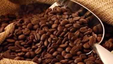 five varieties of Indian coffee