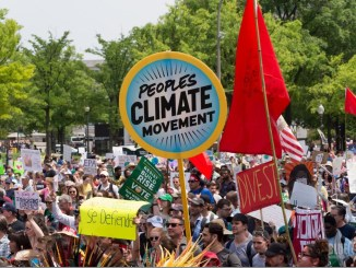 New global warming model highlights strong impact of social learning