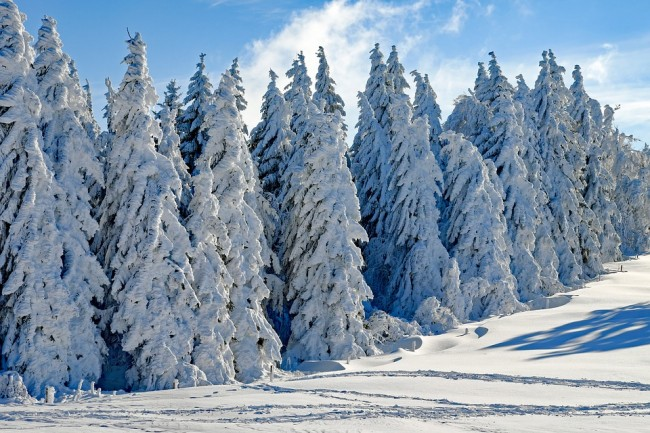 Back-to-back low snow years will become more common