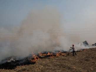 To conserve water, Indian farmers fire up air pollution