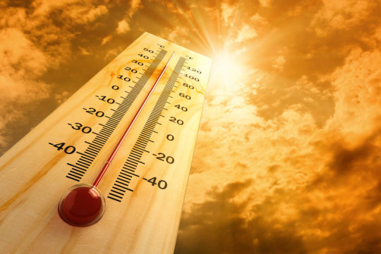 Heat stress may affect