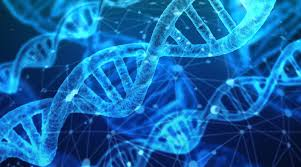 More than half of Americans want money, control in exchange for genetic data