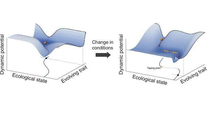 Re-thinking 'tipping points' in ecosystems and beyond