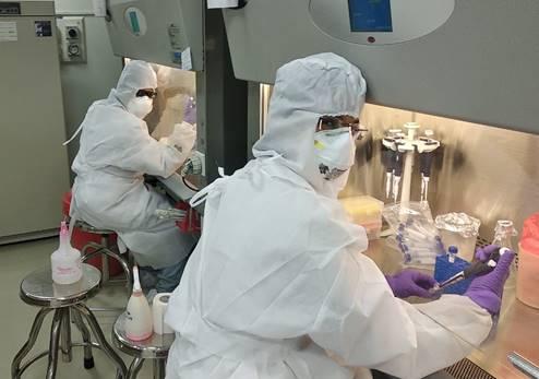 Researchers culture novel coronavirus, may help in drug testing