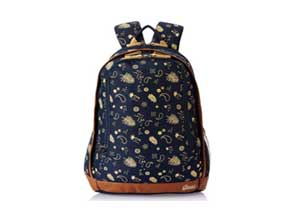 Gear Triumph 26 ltrs Navy Blue and Beige Casual Backpack