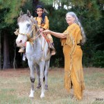 Aihr The American Indian Horse Registry