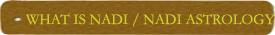What is Nadi/Nadi Astrology
