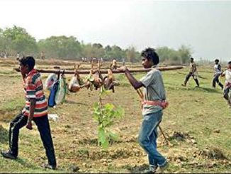 Animals, birds hunted & cooked in open at West Midnapore fair | Kolkata News - Times of India